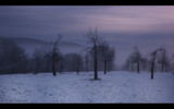 Sleeping Orchard by coram9, Photography->Landscape gallery