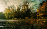 River Trees by casechaser, photography->manipulation gallery