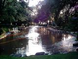 canal by msjenham, Photography->Landscape gallery