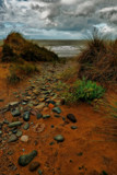 Path to the Sea by biffobear, photography->landscape gallery