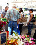 At the Farmers Market by trixxie17, photography->photojournalism gallery