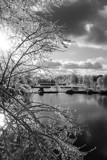 Winter Wonderland by cwbmatt07, Photography->Landscape gallery