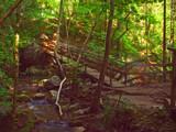 Myra Falls 17 by boremachine, Photography->Waterfalls gallery