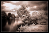 Whitlingham Country Park by JQ, Photography->Landscape gallery