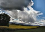 Series: 2. Rainy Skies of Oregon by verenabloo, Photography->Skies gallery