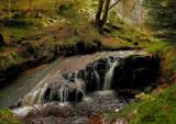 Hindhope Kielder forest by biffobear, photography->waterfalls gallery