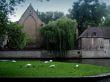Rainy Day In Bruges by jesouris, Photography->Architecture gallery