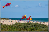 Fun At The Beach by corngrowth, photography->shorelines gallery