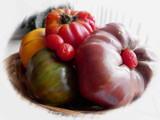 Tomato Time by trixxie17, photography->still life gallery