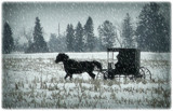 Headed to Town! by Starglow, contests->b/w challenge gallery