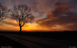 Morning Road by Larser, Photography->Sunset/Rise gallery