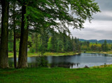 Cragside Lake by biffobear, photography->landscape gallery