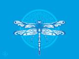 Dragonfly by groo2k, Illustrations->Digital gallery
