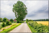 Small Deserted Country Road by corngrowth, photography->landscape gallery