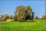 Green Pasture In The Early Fall by corngrowth, photography->landscape gallery