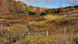 Falli in Virginia 4 by jeenie11, photography->landscape gallery