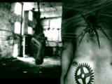 Cyber-Spyder by grimbug, Photography->Manipulation gallery