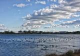 Silver Lake by Jimbobedsel, photography->shorelines gallery
