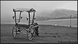 Horse and cart by Ravindra077, Photography->Landscape gallery