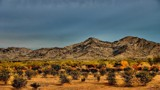 Colours of the Mohave by snapshooter87, photography->landscape gallery