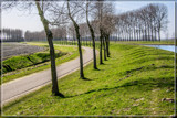 Every Road Has A Bend (3) by corngrowth, photography->landscape gallery