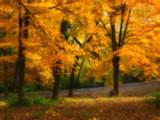 Morning Light by jojomercury, Photography->Landscape gallery