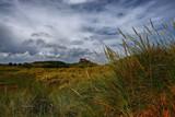 Grasslands by biffobear, photography->landscape gallery