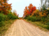 Autumn Road by Eubeen, photography->landscape gallery