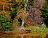 Spot the Birdie... by biffobear, photography->landscape gallery