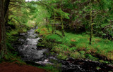 A river ran through It.. by biffobear, photography->landscape gallery