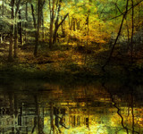 Caught in Mid Fall by casechaser, photography->manipulation gallery