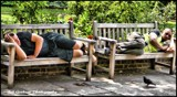 Having a Nap... by Dunstickin, photography->people gallery