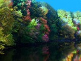 Another take on Autumn On The Grand by LakeMichiganSunset, rework gallery