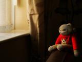Monkey by biffobear, photography->still life gallery