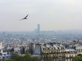 A Look Over Paris by Blazeheat, Photography->City gallery