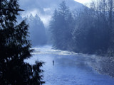Fishing on the Nooksack - original by darrellplank, Photography->Landscape gallery