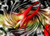 Columbine Dancer by snapshooter87, photography->manipulation gallery