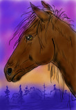 Dream Horse by bfrank, illustrations gallery