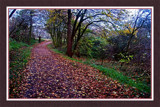 Walcheren Country Roads & Paths 07 by corngrowth, Photography->Landscape gallery