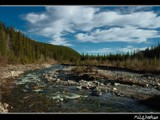Mountain Stream by MiLo_Anderson, Photography->Landscape gallery