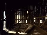 Zebra by jojomercury, Photography->Architecture gallery