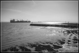 Riverbank In B&W by corngrowth, photography->shorelines gallery