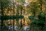 Estate Reflections by corngrowth, photography->landscape gallery