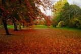 Shibdon Splendour by biffobear, photography->landscape gallery
