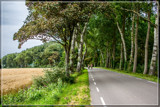Scenic Bike Ride by corngrowth, photography->landscape gallery