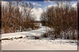S by Jimbobedsel, photography->landscape gallery