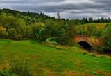 Two Crows and a Bridge by biffobear, photography->bridges gallery