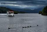 MV Swan by biffobear, photography->boats gallery