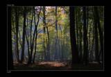 Dramatic Light by kodo34, Photography->Landscape gallery