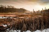 Winterwonderland by japio, photography->landscape gallery
